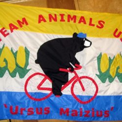 Stitched Team Animals USA Flag